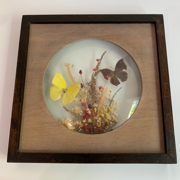 Vintage Other - Vintage Dunston Butterfly Wall Art